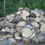 Brennholz zur weiteren Verarbeitung